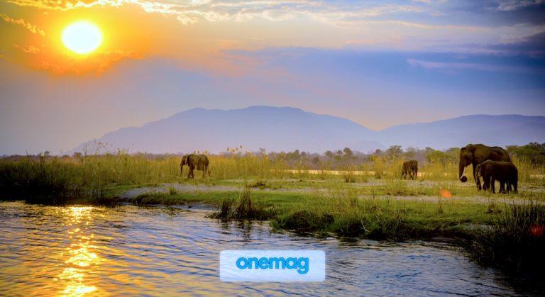 Gli imperdibili luoghi naturali dello Zambia
