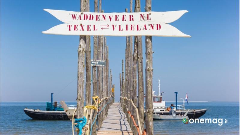 Visitare Texel in Olanda