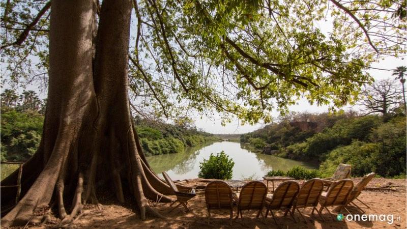 Cosa visitare nel Parco nazionale Niokolo-Koba