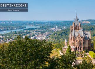 Cosa vedere a Bonn, la città dei ciliegi