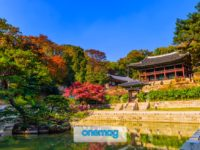 Palazzo di Changdeokgung a Seul
