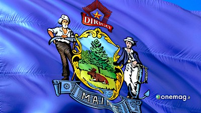 Maine, bandiera