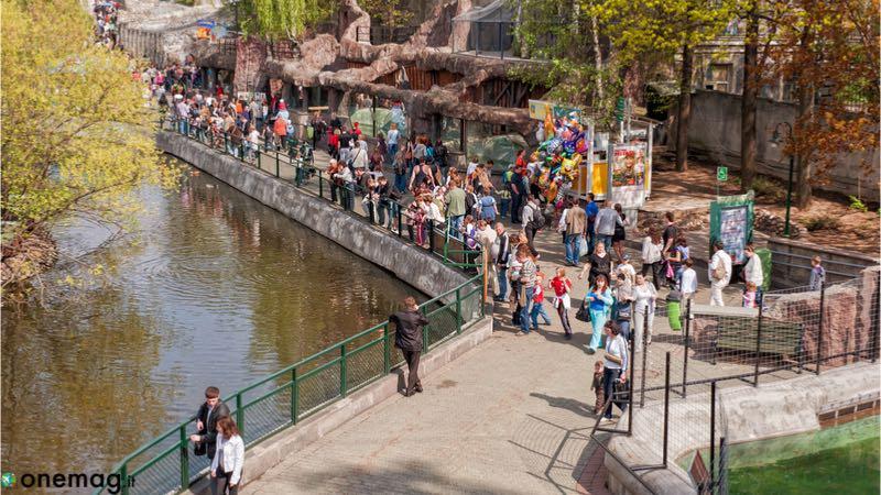 Zoo di Mosca, uno tra i migliori centro zoologici in Europa