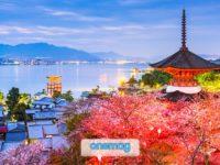 Miyajima, l'isola sacra del Giappone