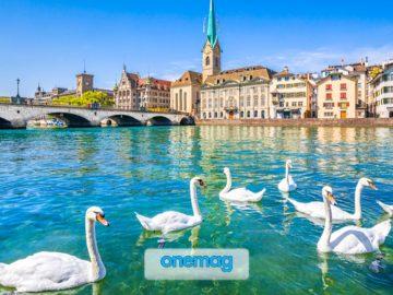 Lago di Zurigo