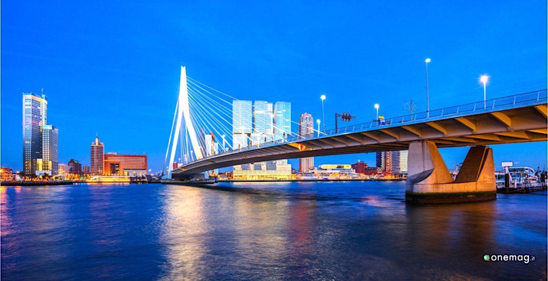 Rotterdam, viaggi per immagini