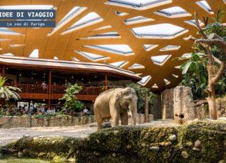 Lo zoo di Zurigo