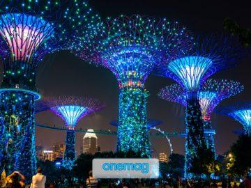 Gardens by the Bay, il giardino sospeso di Singapore