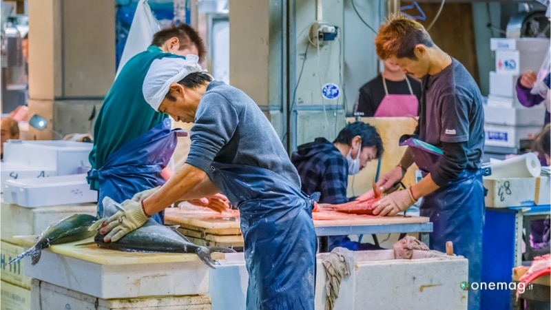 Il mercato centrale di pesce, cosa vedere a Tokyo