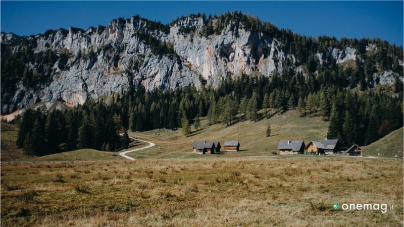 Wels, a spasso nell'Alta Austria