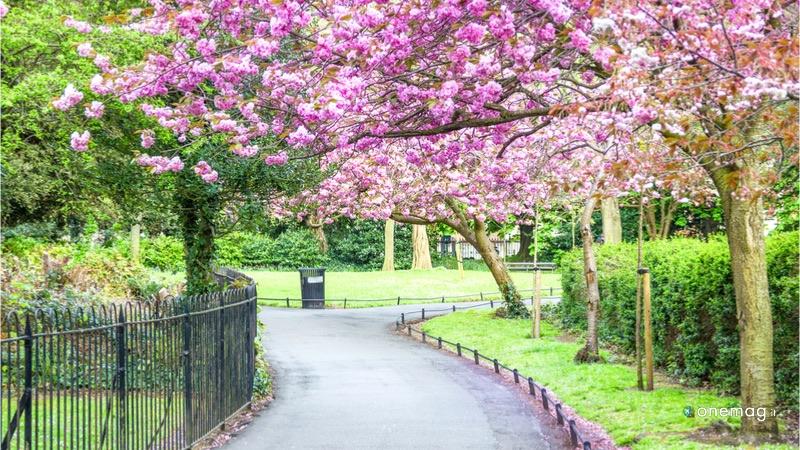 Cosa vedere a Dublino, St Stephen's Garden