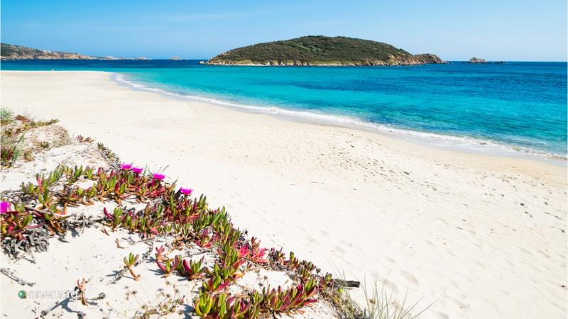 Le migliori spiagge d'Italia, Spiaggia di Tuerredda
