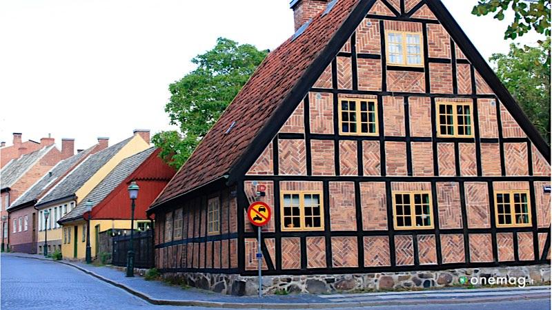 Lund, la seconda città più antica della Svezia, museo Kulturen