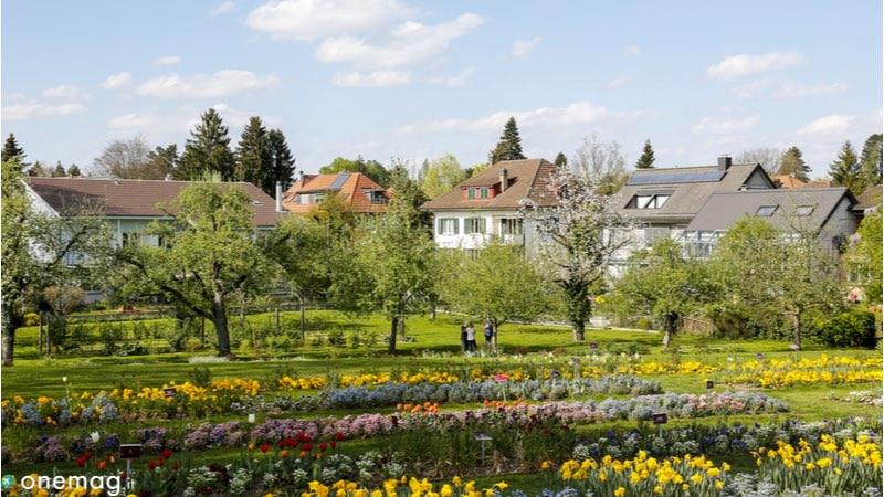 Le 10 cose da vedere a Berna, Giardino Botanico