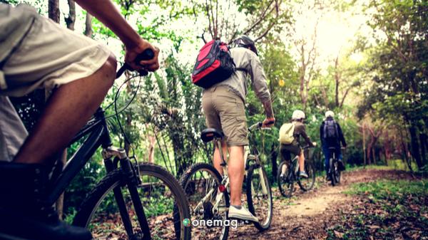Gran bosco del Salbertrand, bici