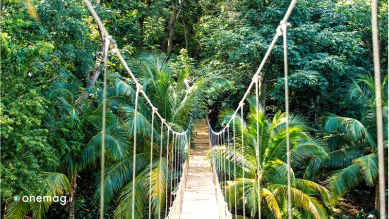 Vacanza in Honduras