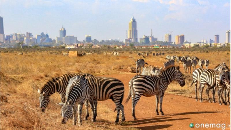 Le 10 cose da vedere a Nairobi, il Parco Nazionale
