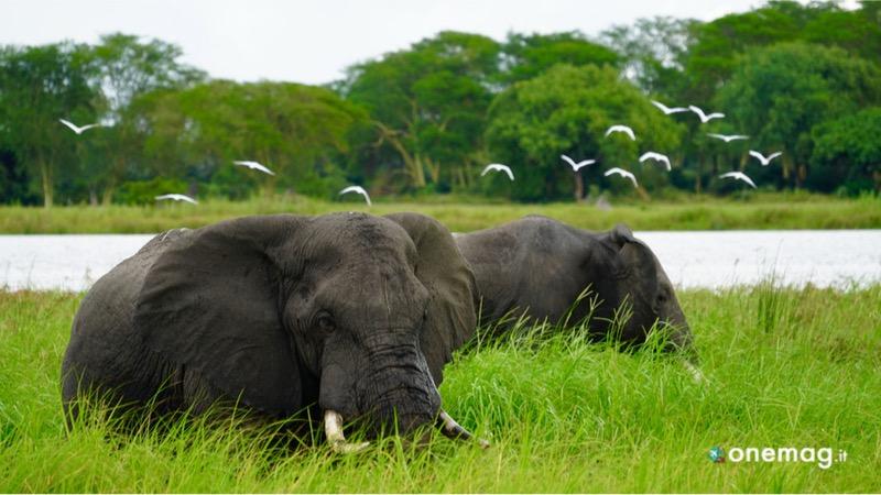 Visitare Lake Malawi National Park