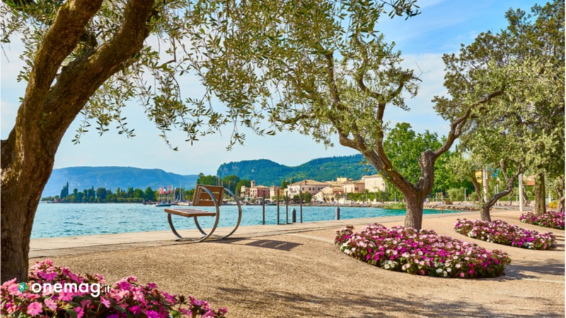 La sponda veneta del Lago di Garda, città di Bardolino