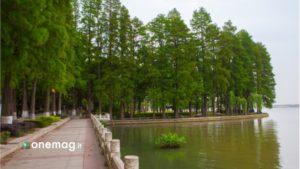 Il parco di Wuhan