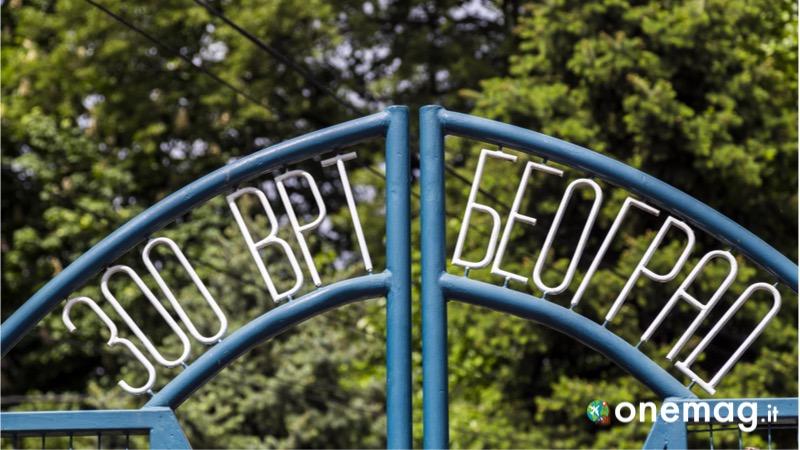 Cosa vedere a Belgrado, lo zoo di Belgrado