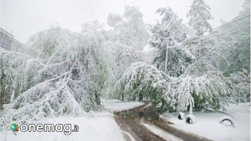 Cosa vedere a Chisinau, il clima