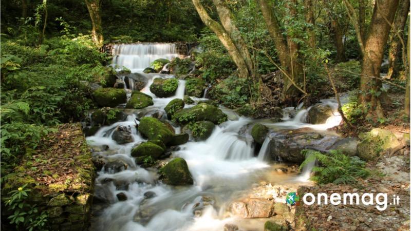 Visitare i parchi nazionali in Nepal, il parco Shivapuri Nagarjun