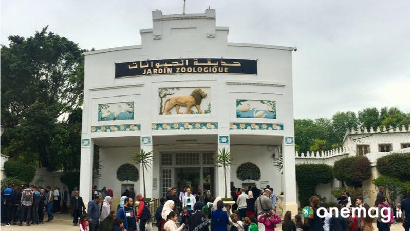 Cosa vedere ad Algeri, lo zoo