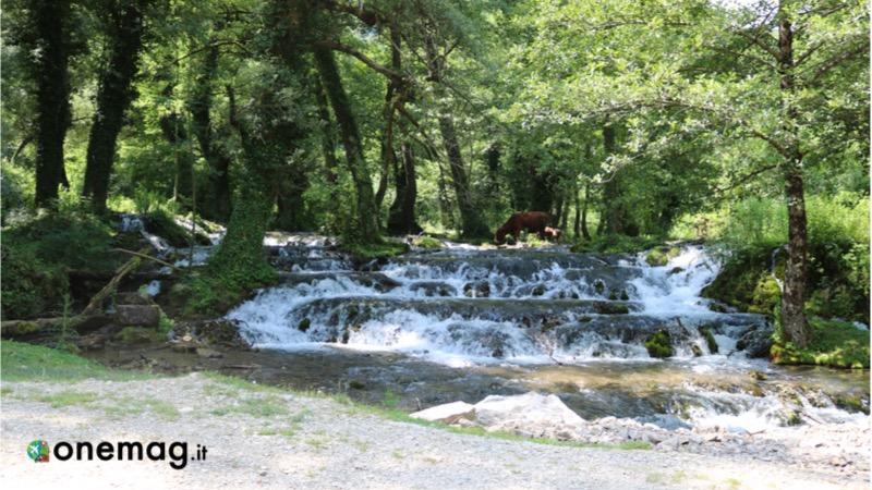 Cosa vedere a Banja Luka e nei dintorni, le cascate di Krupa