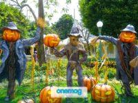Halloween in Italia, come trascorrere il 31 Ottobre