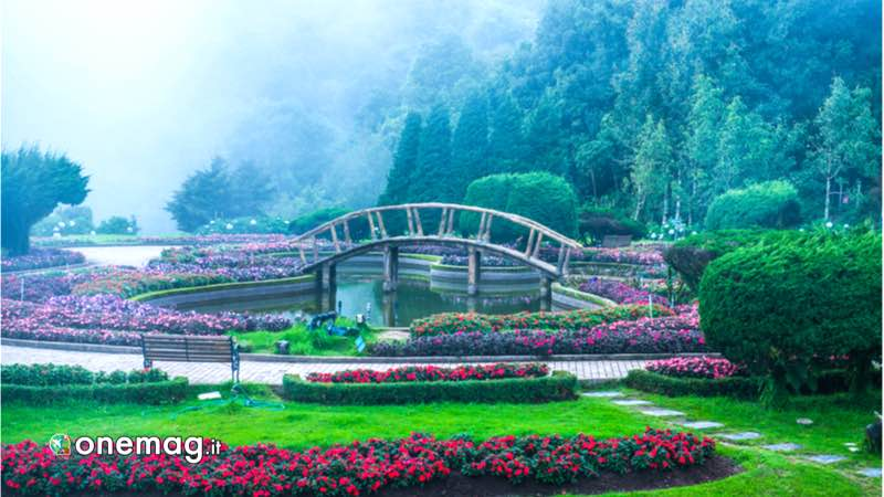 Cosa vedere a Chang Mai, Parco Nazionale Doi Inthanon