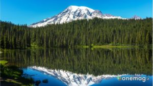 Parco Nazionale Mount Rainer