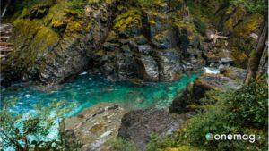Corsi d'acqua nel Parco Nazionale Mount Rainer