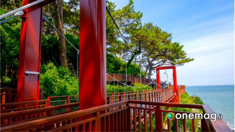 Isola Dongbaek, sentiero