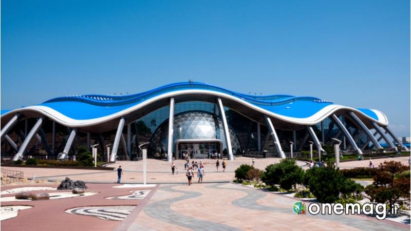 Vladivostok, Primorsky Aquarium