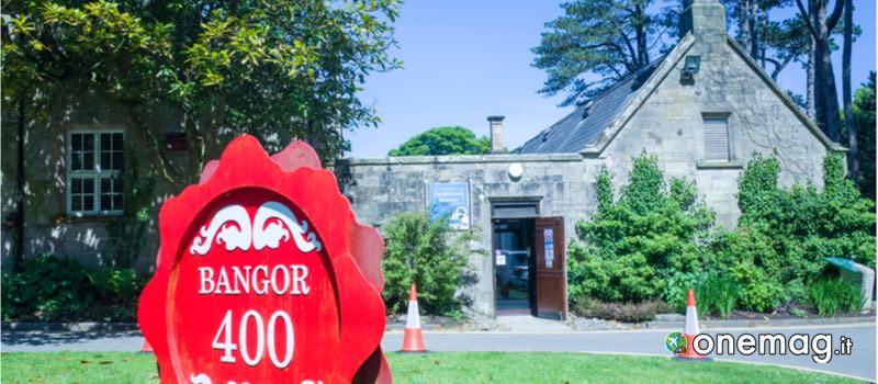 North Down Museum, Bangor