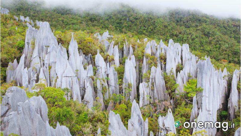 Parco Nazionale di Gunung Mulu