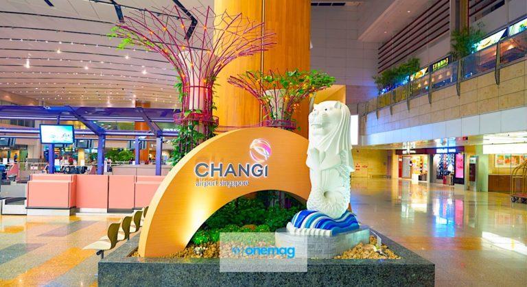 Benvenuti nell'aeroporto del futuro, Singapore Changi