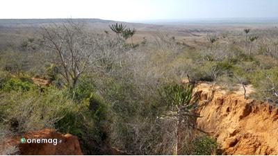 Il Parco Nazionale Kissama in Angola