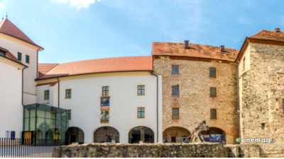 Cosa vedere a Celje, Palazzo del Principe