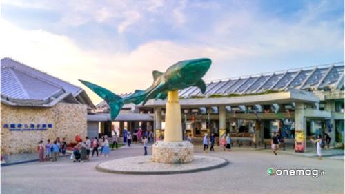 I migliori acquari del mondo, Okinawa Churaumi Aquarium