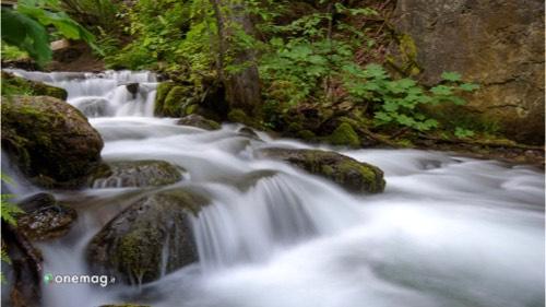 Cosa vedere ad Anchorage, Chugach State Park