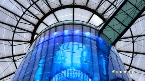 I migliori acquari del mondo, Berlino Aquadom
