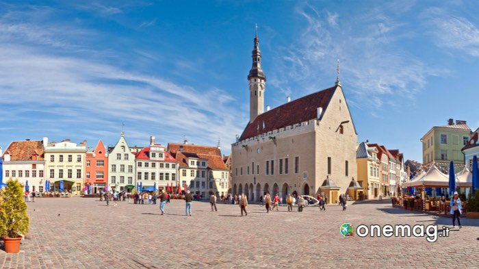 Cosa vedere a Tallinn, il Municipio