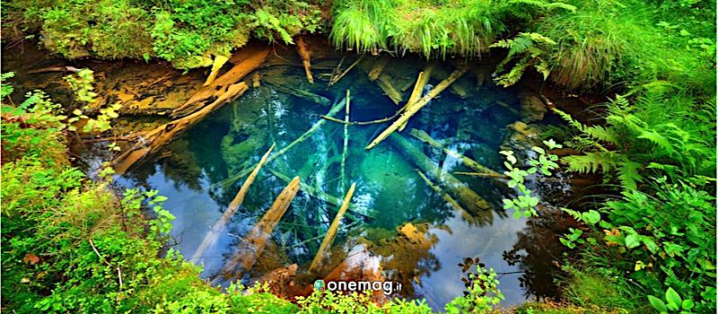 Jogeva, Estonia, Riserva Naturale Edla