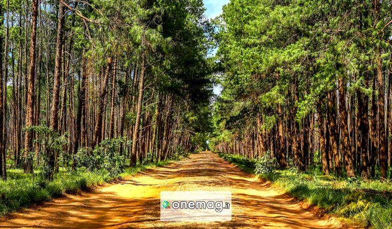 Huambo, Angola   Cosa vedere nella provincia di Huambo