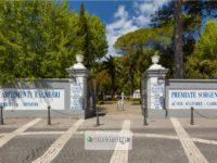 Cosa vedere a Telese Terme, Campania