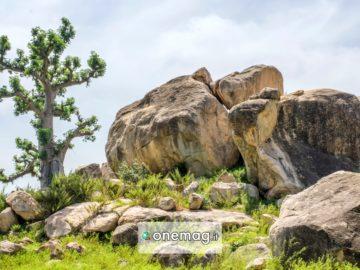 Cosa vedere nello stato di Bauchi in Nigeria