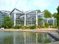 Palmengarten, il giardino botanico di Francoforte