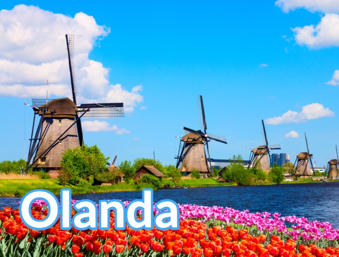 Olanda Box Europa